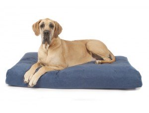 Soft Top Dog Bed