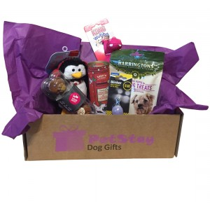 PetStay Dog Gift Box