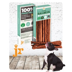 100% Pure Salmon Treat Sticks - JR Pet Products