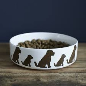 Cockapoo Mischievous Mutts Dog Bowl (Large)