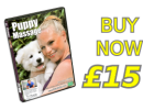 Learn to massage your dog DVD