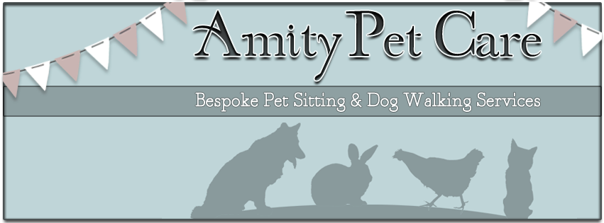 amity pet care cover
