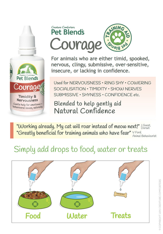 courage info