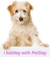 i holiday with petstay smaller