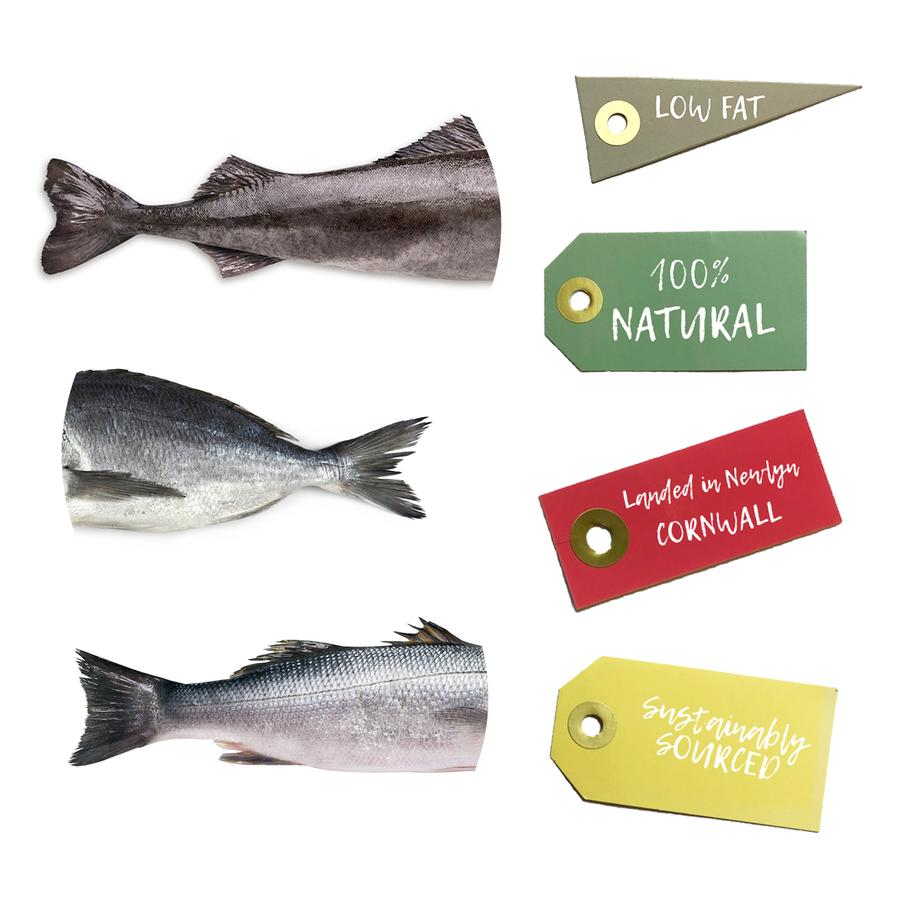 Fish Cubes for dogs made in Cornwall 4b8dd377 401b 4d29 9a30 b478d6eaa53f 900x