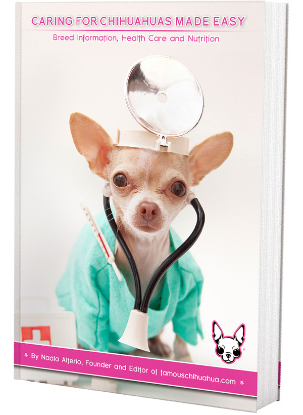 Famous Chihuahua 3D Book