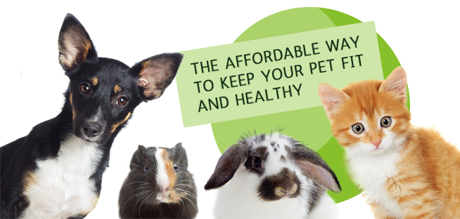 pic pet health care plan