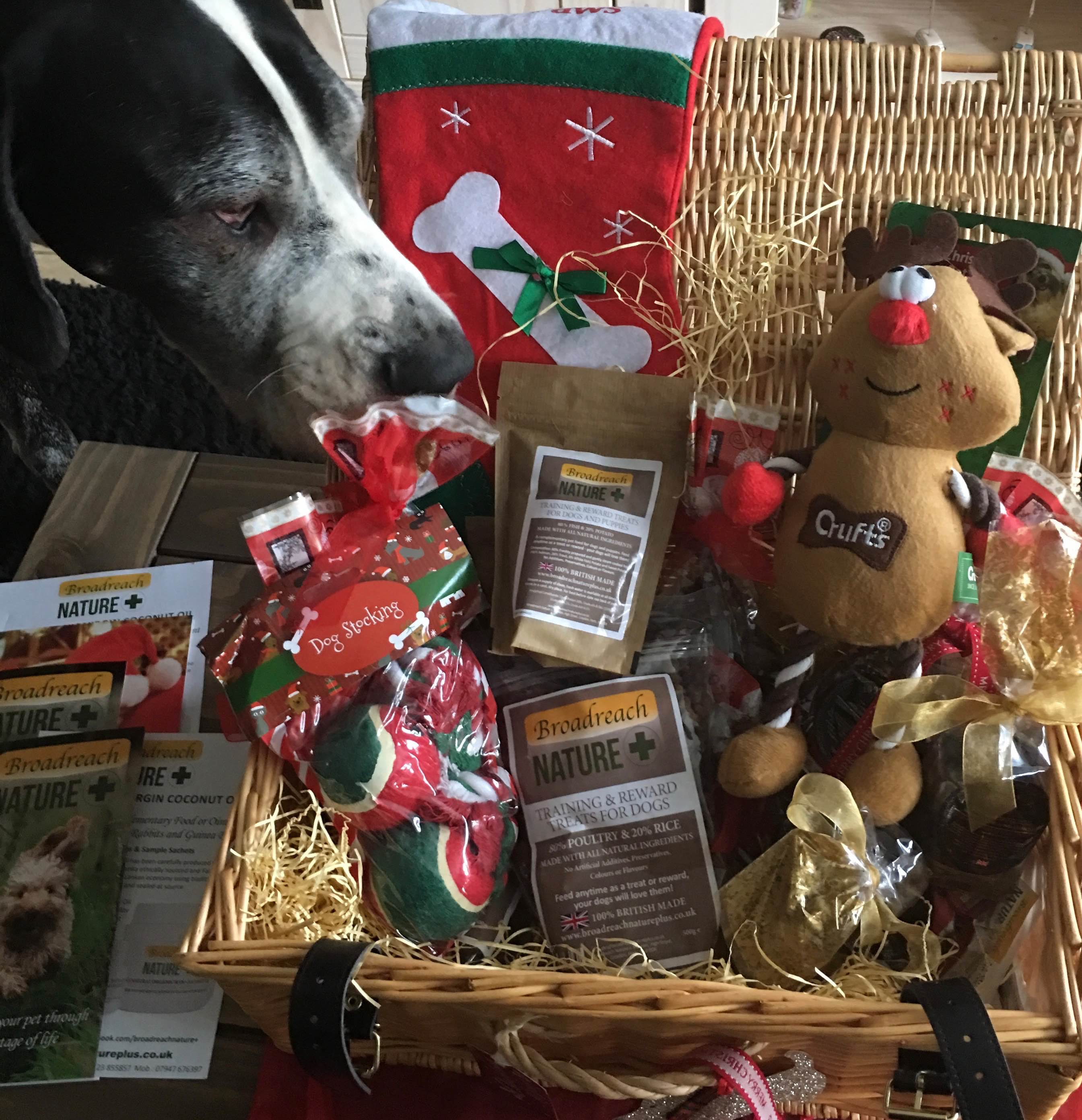 These hampers are the last word in canine christmas luxury from venison treats to coconut oil to fun toys this hamper will ensure that your dog is fed and amused until easter negle Image collections