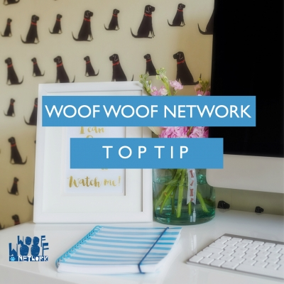 Social Media Tips To Boost Your Pet Biz in 2017 - By Katie Tovey-Grindlay of Woof Woof Network