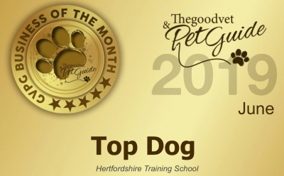 Top Dog | Business Of The Month June 2019