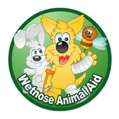 Wetnose Day For Animals
