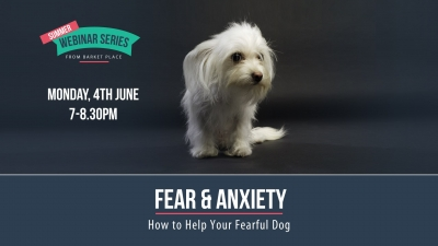 Fear and Anxiety Webinar: How to help your fearful dog