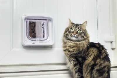 Win A Microchip Cat Flap Connect and the Hub Worth £149.99