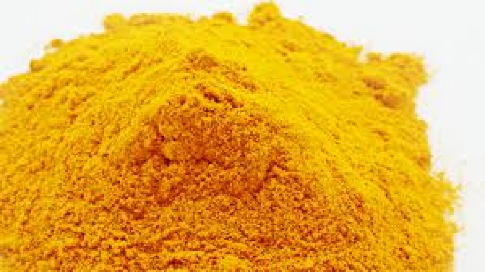 The Benefits of Turmeric for Your Dog - Nutrition - The Good