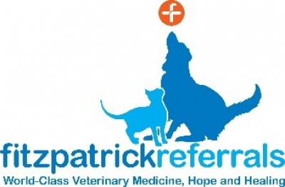 Human and veterinary medicine together in the fight against cancer at Fitzpatrick Referrals
