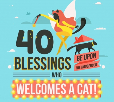40 Great Reasons To Own A Cat