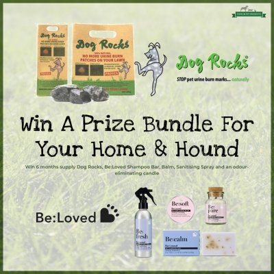 Win A Prize Bundle For Home and Hound