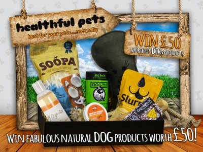Win A Gift Box For Your Dog Worth £50