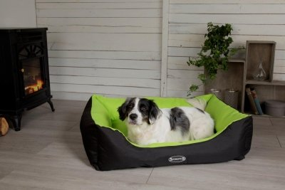Win A Scruffs Dog Bed Worth up to £64.99