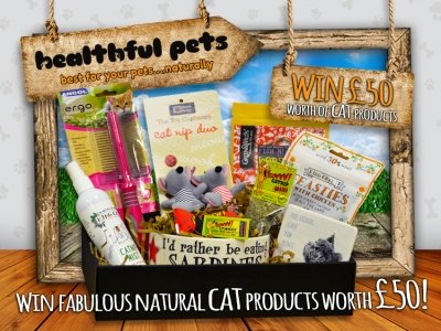 Win A Gift Box For Your Cat Worth £50