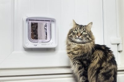 NEW! Cat Flap Connect + Hub