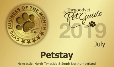Petstay Newcastle | Business Of The Month July 2019