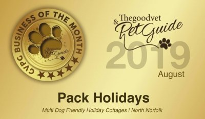 Pack Holidays | Business Of The Month August 2019
