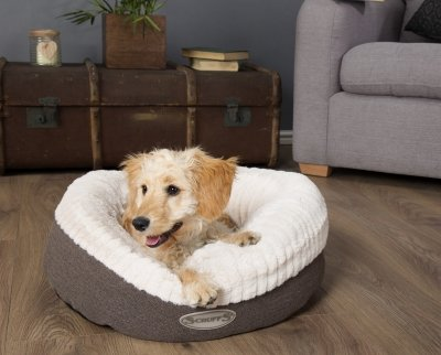 Win The Paw'some Ellen Donut Bed from Scruffs®