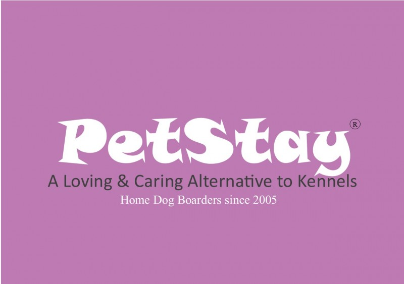 Petstay Dorset and Bournemouth - Home Dog Boarding