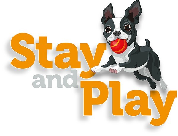 Stay And Play Doggy Day Care Romford Essex