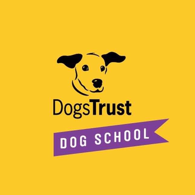 Dogs Trust Dog School Kent