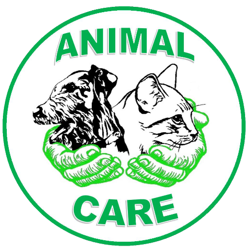 Affordable writing services pet care