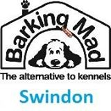 Barking Mad Dog Care (Swindon)