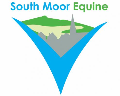 South Moor Equine Vets - Devon
