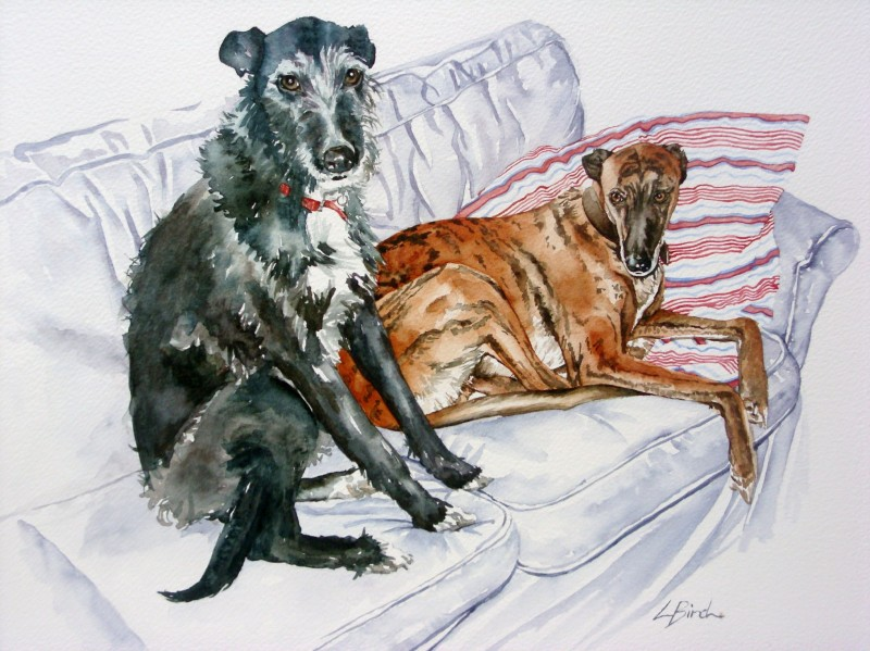 Tilly & Blue - The Pet Portrait Company