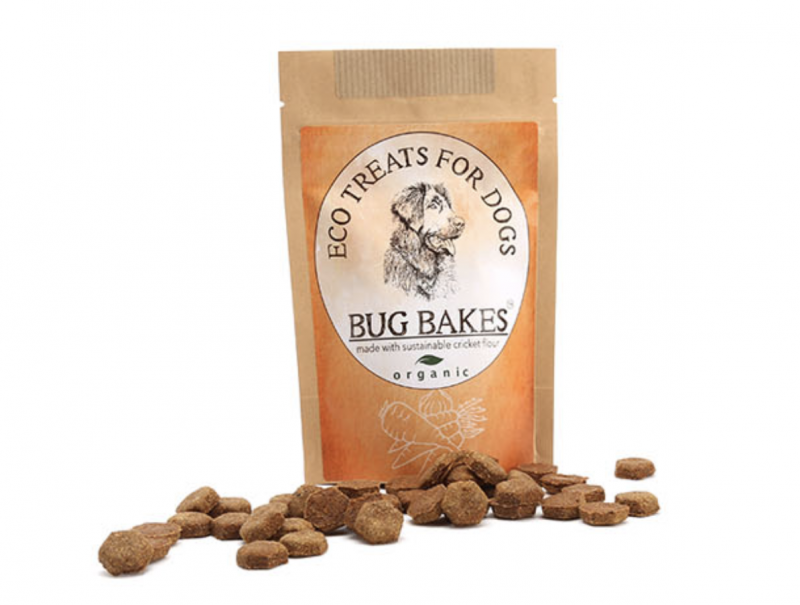 Single pack of bug bakes