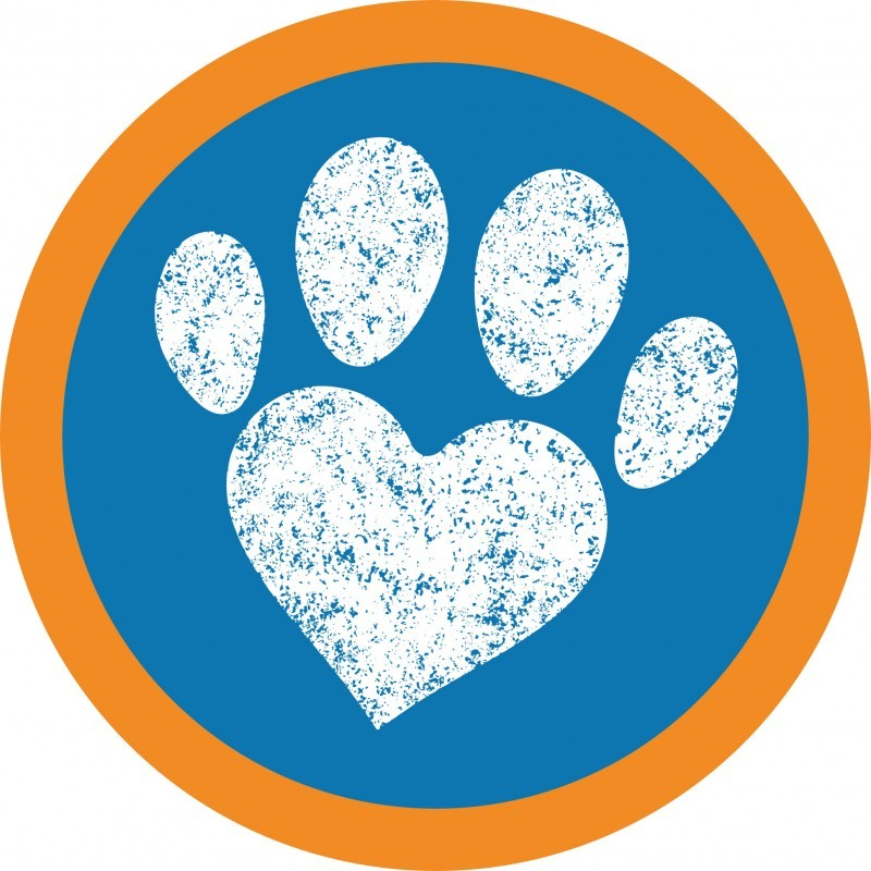 Holidays4Dogs Worcestershire - Home Boarding for Dogs