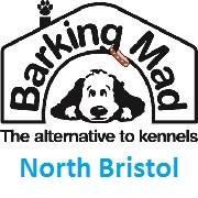 Barking Mad Dog Care Bristol