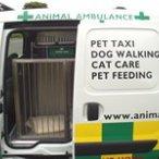 Animals At Home North Warwickshire