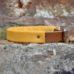 Mustard Corduroy x Leather Dog Collar
