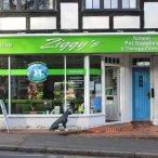 Exterior of Ziggy's Pet Shop