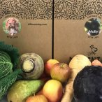 Different dog packaging with fruit and vegetables