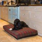 Berkeley Dog Beds | Hampshire