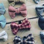 bow tie wr 2.jpg