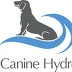 Malvern Canine Hydrotherapy - Worcestershire