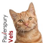 PAULERSPURY FAB AVATAR.png