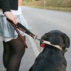 ROK Straps NO JOLT Stretch Lead for Dogs