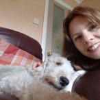Pet-sit-Bedlington-Terrior-Barnsley.jpg