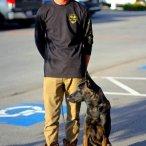 dog+kennel+near+me.jpg