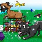 Pet caricature scene